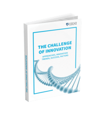 The Challenge of Innovation E-Book