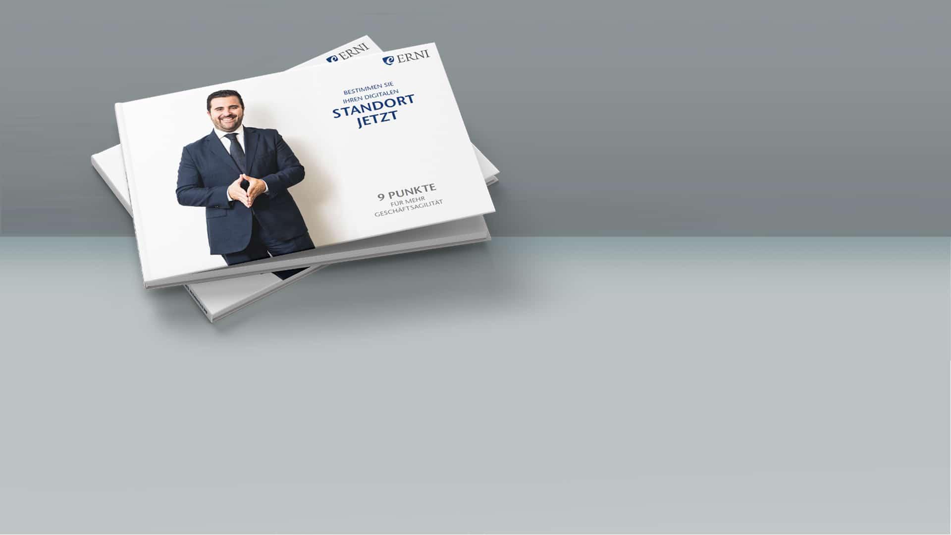 9 Punkte für mehr Geschaftsagilität - E-Book