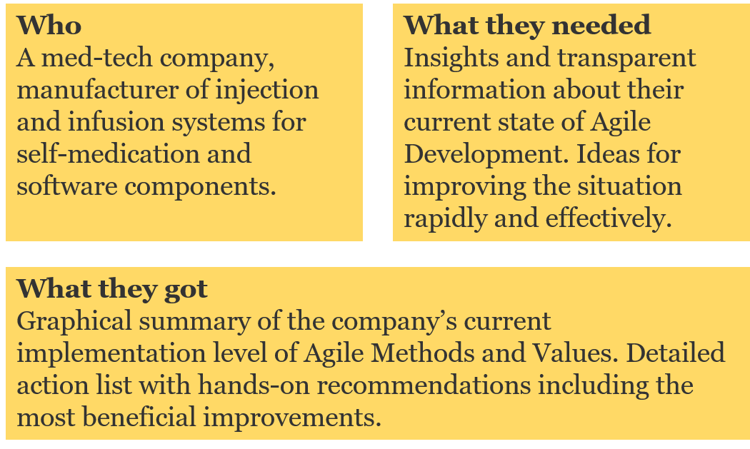 how agile are you case study